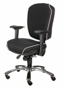 Basic Orthopedic Chair