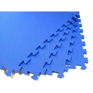 Blue Interlocking Floor Mat